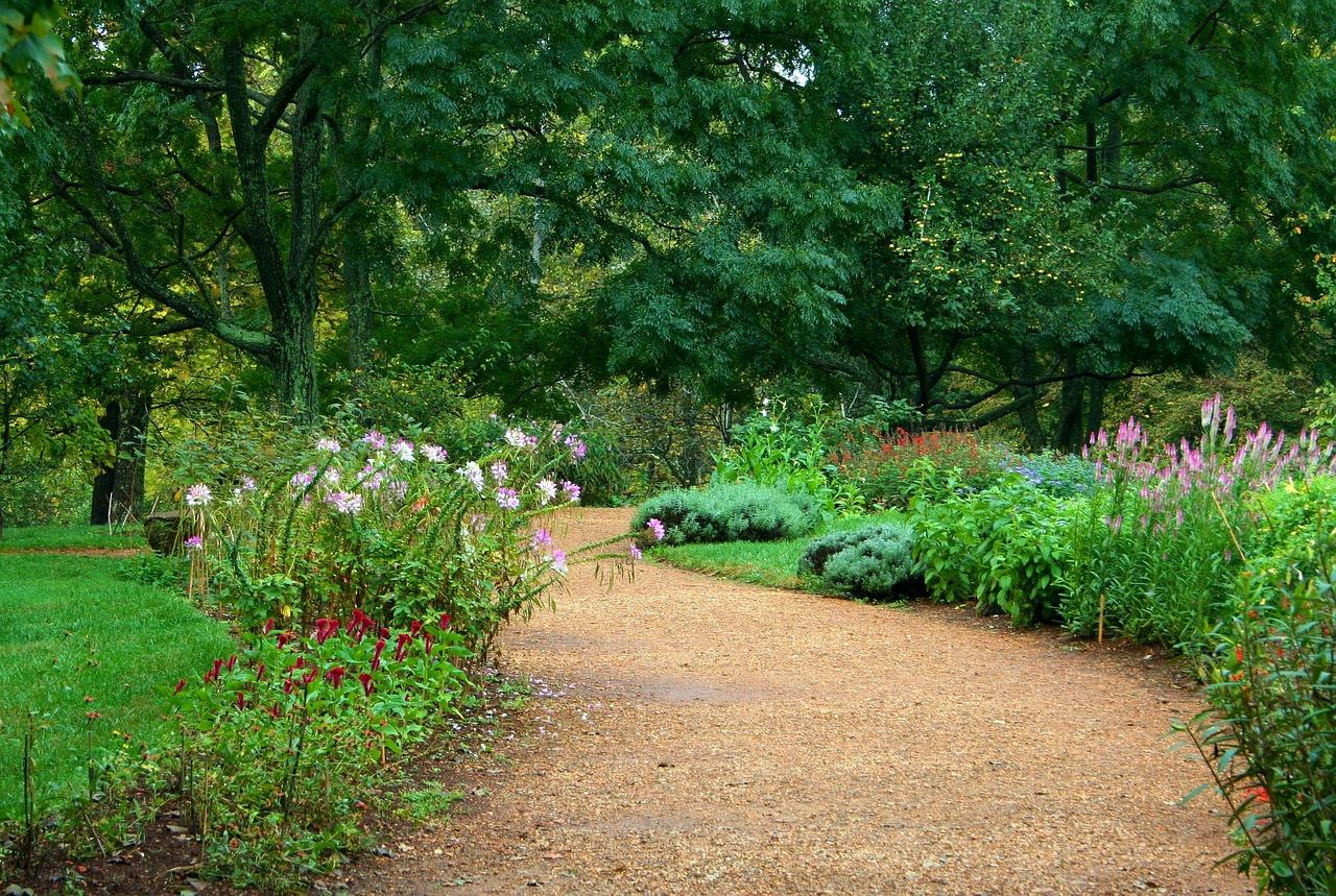 Ogród dobrze nawodniony